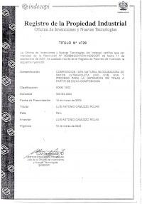 Design Registration Peru