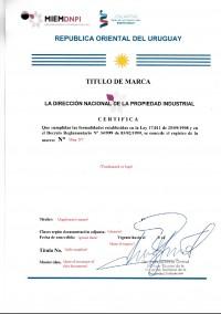 Legal representative for trademark in Uruguay