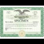Company incorporation GmbH (limited liability company)