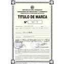 Trademark Registration Paraguay
