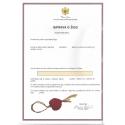 Trademark Registration Montenegro