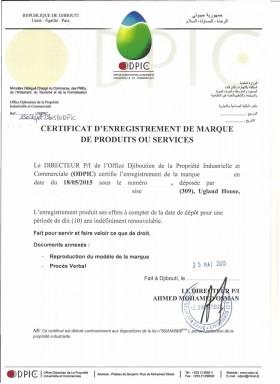 Legal representative for trademark in Djibouti