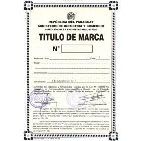 Legal representative for trademark in Paraguay