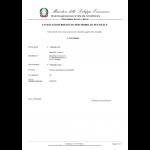 Gebrauchsmuster Anmeldung Italien